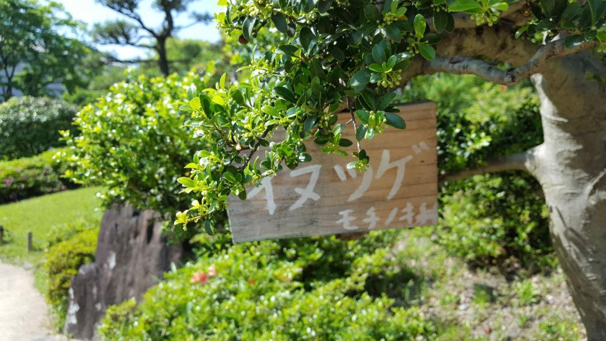 osaka-keitokuen-garden