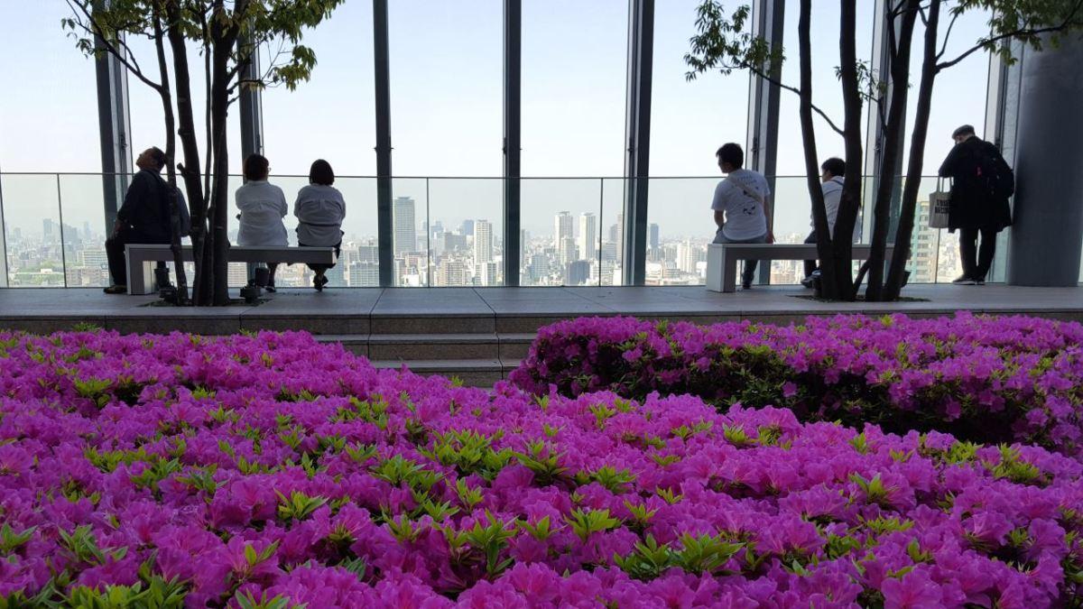 Osaka_roof_garden